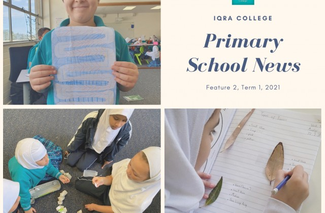 Primary School Newsletter